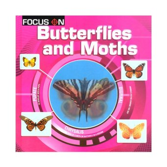Ws Focus On Butterflies And Moths