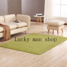 As Seen On TV Malaysia 40cm X Mini Silk Hair Living Room Coffee Table Bedroom Carpet Light Green