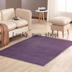 As Seen On TV Malaysia 40cm X Mini Silk Hair Living Room Coffee Table Bedroom Carpet Light Purple