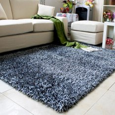 Coffee Table Living Room Carpet Bed Bedroom Grade Thickened Encryption Silk CarpetA