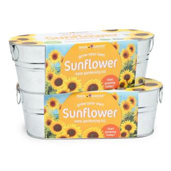 Paris Garden Sunflower Easy Gardening Kit (Set of 2)