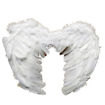 Angel Wings 45 x 35 (D)