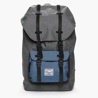 Technopack 652 TPBP Backpack (Gray and Blue)