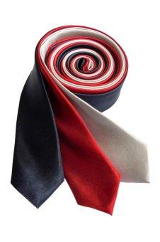 Well Suited Plain Slim Necktie Combo 2