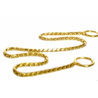 Pet Dog Training Collar Metal P Leash Leads Golden Silver Dog ChokeChain Snake - Gold 5mm*65cm - intl