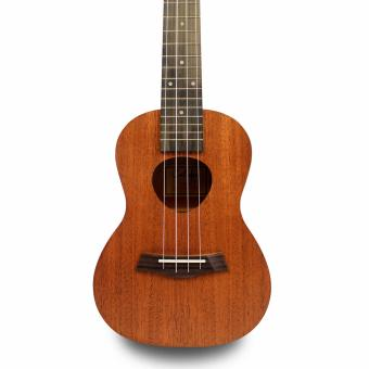 Caledon C1 Concert Ukulele with FREE Accessories - 5