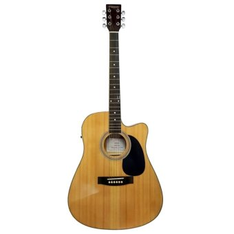 FERNANDO Acoustic-electric  AW41cEQ