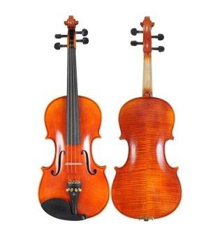 Jasmine Violin 3/4 (Natural Glossy)