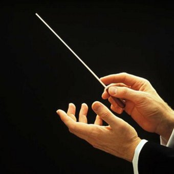 OH Music Concert Rhythm Band Director Conductor Baton 38.5cmMusical Instrument Black&White Price Philippines