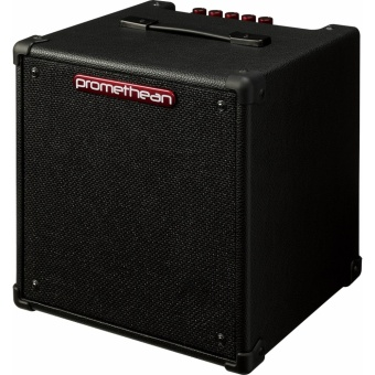Promethean P20 Bass Combo Amplifier Price Philippines
