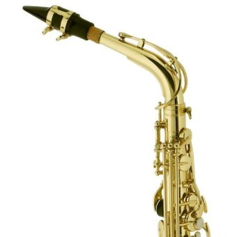 Thomson Tenor Saxophone (Gold) - 3