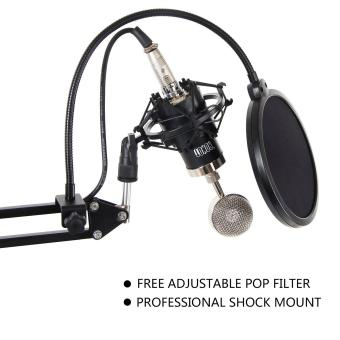 Tonor Condenser Microphone Set Recording Mic With Suspension Boom Scissor Arm Stand With Built-In Xlr Cable And Pop Filter Shock Mount Holder And 48V Phantom Power Supply With Adapter Kit For Computer