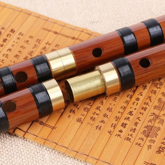 WOND Imitation Jade Flute Beginner Students Flute With Single Brass Bamboo Flute Key G Brown - intl