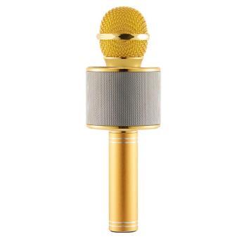 WS-858 NEW Karaoke Microphone and Wireless Bluetooth Hi-Fi Speaker (Gold) - 2