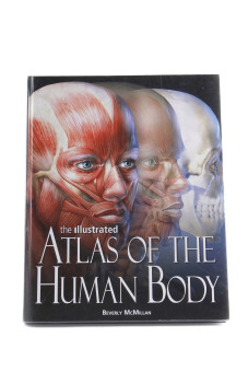 WS The Illustrated Atlas of the Human Body