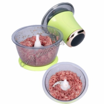 Rising Star Electric Meat Mincer Grinder Household Price Philippines