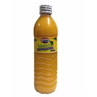 AA&LL - McNester Mango Concentrate 500ml Price Philippines