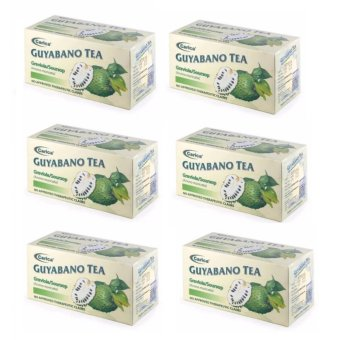 investigatory project on guyabano tea Extract your own dna have you ever wanted to see what makes you, you.