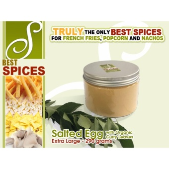 Extra Large Salted Egg Best Spices Flavor powder French Friespopcorn nachos flavorings 290grams seasoning