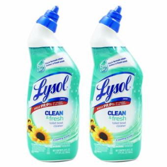 Lysol Clean & Fresh Toilet Bowl Cleaner Country Scent 709ml Set of 2