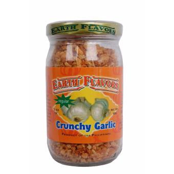 Set of 3 Bottles Earth Flavors Crunchy Garlic Regular 100g - 2