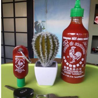 Sriracha 17oz and 1 oz bundle