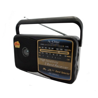 A-One AE-280 Portable Multi Function FM/AM/TV Radio (Black) Price Philippines