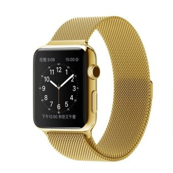 Bluesky Apple Watch Band, with Unique Magnet Lock, 42mm Loop Stainless Steel Bracelet Strap Band for Apple Watch 42mm All Models No Buckle Needed, Gold