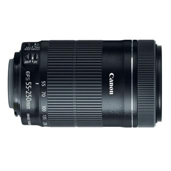 Canon EF-S 55-250mm f/4-5.6 IS STM Lens - intl