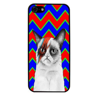 Chevron Grumpy Cat Pattern Phone Case for iPhone 5C (Black)