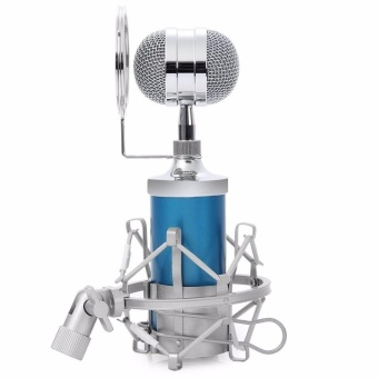 Condenser Microphone BM-8000 For Studio Recording With Shock MountPop Filter - intl