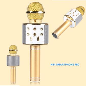 CT WS-858 Wireless Karaoke Bluetooth Microphone HIFI Speaker (Gold)