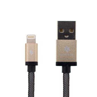Earldom 1M Safe & Speed Data MicroUSB Cable for Apple (Gold) Price Philippines