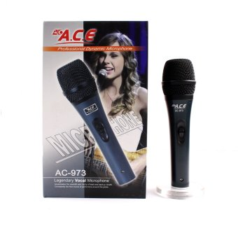 Harga Ace AC-973 Professional Uni-directional Dynamic Legendary Vocal Wired microphone (Grey)