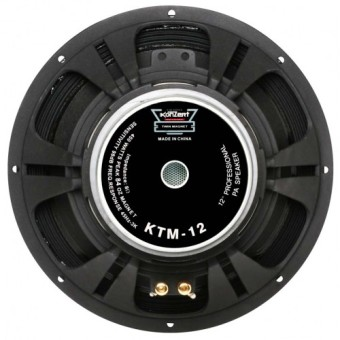 "Konzert KTM-15 15"" 600W Double Magnet Professional PA Speaker Price Philippines"