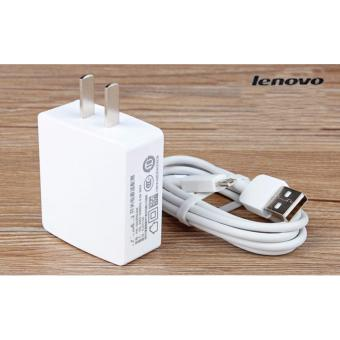 Lenovo-1A Fast Charger For Smart Phone Whit USB (White)