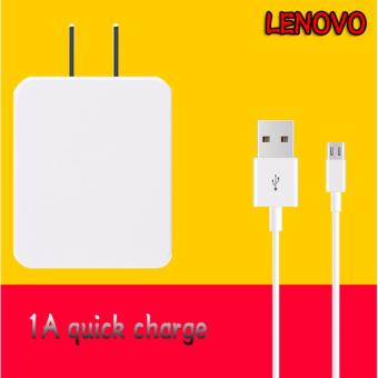 LENOVO-1A Quick Charger For Smart Phone Whit USB Cable