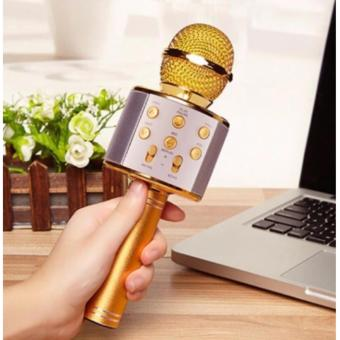 Microphone Wireless KTV Karaoke Bluetooth Handheld Mic HIFI Speaker(Gold)WS858