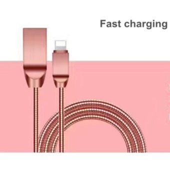 New Metal Zinc Alloy Spring Cable Fast Charge Mobile Phone ChargerLine USB Data Cable For Iphone IOS - intl Price Philippines