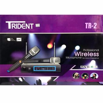 Trident TR-2 Dual Wireless Microphone Professional System (Black)