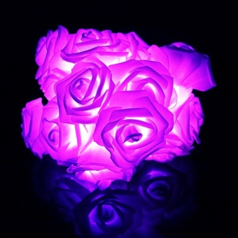 220CM 20 Rose Led string Flower light Fairy Lantern Pink Romanticfor Holiday Wedding Party Christmas Valentine's Day Decor WR - intl