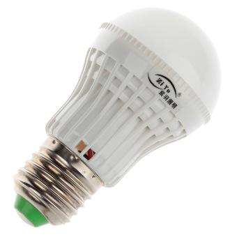 243651 LED Lamp Bulb (White)