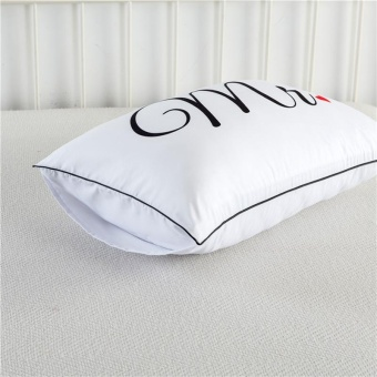 2pcs/lot Washable Pillowcases Decorative Body Pillow Case Plain Design Home Hotel Bedding Pillow Cases Romantic White Pillow Cover Gifts - intl - 2