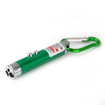 3 LED Laser Pointer Torch Flashlight with Keychain (Green)