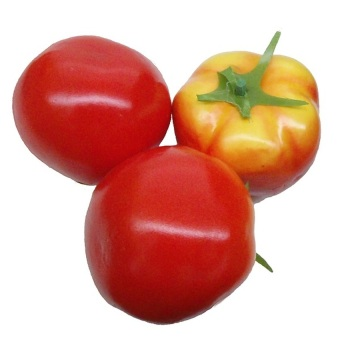 30 Pieces Vegetable Fruits Tomato Seed Plant Seeds - intl