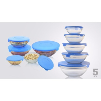 5 Piece Glass Bowl Set with Lids (Color May Vary) Price Philippines