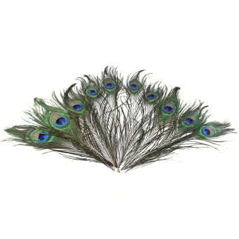 50 PCS 25-30cm Decoration Natural Peacock Feather Peacock Tail EyeFeathers for Craft Art Dress Hats Dance Costumes Party