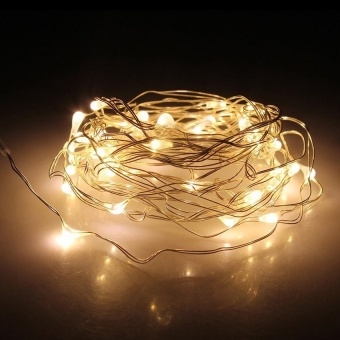 5M 50LED String Copper Wire Battery Powered Waterproof Fairy Light (Warm White) - intl