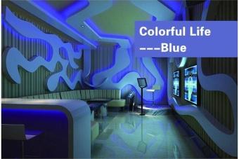 5M RGB 5050 Non Waterproof LED Strip light SMD 44 Key Remote 12V Power - intl - 3