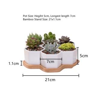 7+1 pcs/set Decorative Geometry Hexagon White Ceramic SucculentPlant Pot Porcelain Flower Pot Zakka Home Decor(7 pots+1 tray) -intl - 4